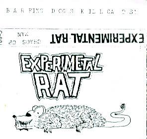 Experimental Rat