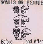 Walls Of Genius originally released 1984, CD re-ssiue pictured.
