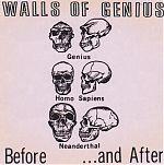 Walls Of Genius originally released 1984, CD re-ssiue pictured.