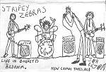 """Stripey Zebras """"Live IN Burnett's Bedroom"""""""