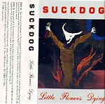 """Lisa Crystal Carver, also know as, Suckdog, did some cassettes of screaming, little girlish acting out, psychodrama and bizarre manuvers. At one point she was partners with Jean-Louis Costes and toured together. She also had a classic LP called """"Drugs Are Nice"""". From Dover, New Hampshire."""
