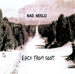 Nad Neslo's ( Dan Olsen from California) music does remind me of driving on the road  pictured on his CD cover. His easy going, high tenor voice and lead guitar draw from Neil Young and his stretched out songs make for immersion into his sepia colored, wistful, but vista filled world.